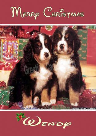 Personalised Corgi Puppy Christmas Card